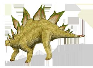 Stegozaury