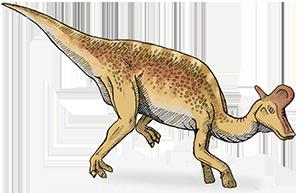 Dinozaury ptasiomiedniczne