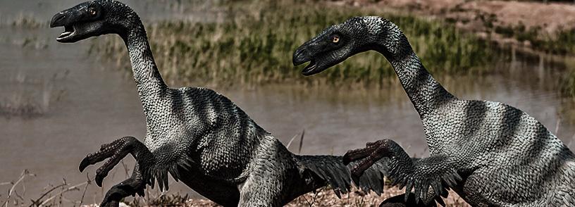 Budowa dinozaurów